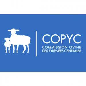 Logo COPYC